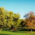 Nueva suscripción gratuita a los boletines de patentes verdes