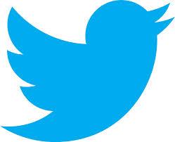 Qué hacer si suplantan mi identidad en Twitter