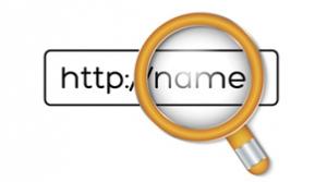 vigilancia de dominios