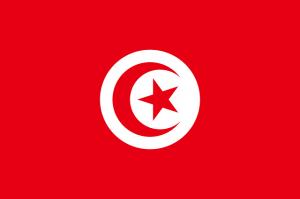 tunez se une al tmview