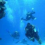 Jacques Cousteau: el gran inventor submarino